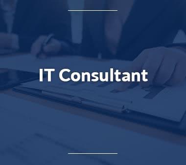 IT Consultant IT-Systemelektroniker
