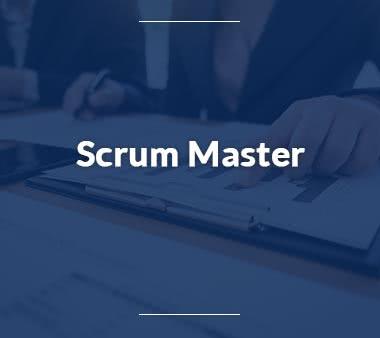 Scrum Master Jobs